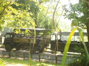 port-lympne-safari-trucks